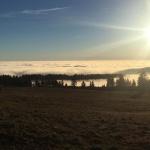 Ort: Hoherodskopf / Foto: Rebecca Bloß / Datum: 28.12.2018